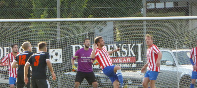 FC Verden 04 steht im Finale